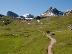Parc national de la Vanoise - TONNELIER Marie-Laure (Copier)