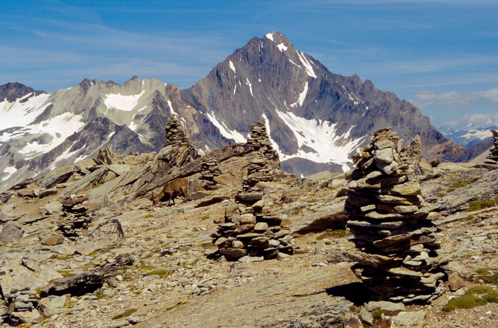 Tour des glaciers de la vanoise maurienne tourisme - Office du tourisme champagny en vanoise ...